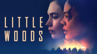 Little Woods (2018) Full Movie - HD 720p