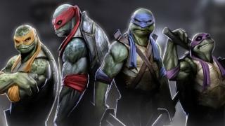 teenage mutant ninja turtles 2014 in hindi full movie